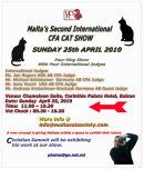 Photographic Exhibition - Cat Show