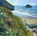 Clifftop Trebarwith
