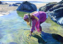 Rockpool Treasures