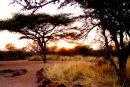 Okonjima and AfriCat