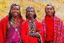 Colourful Trio Trio